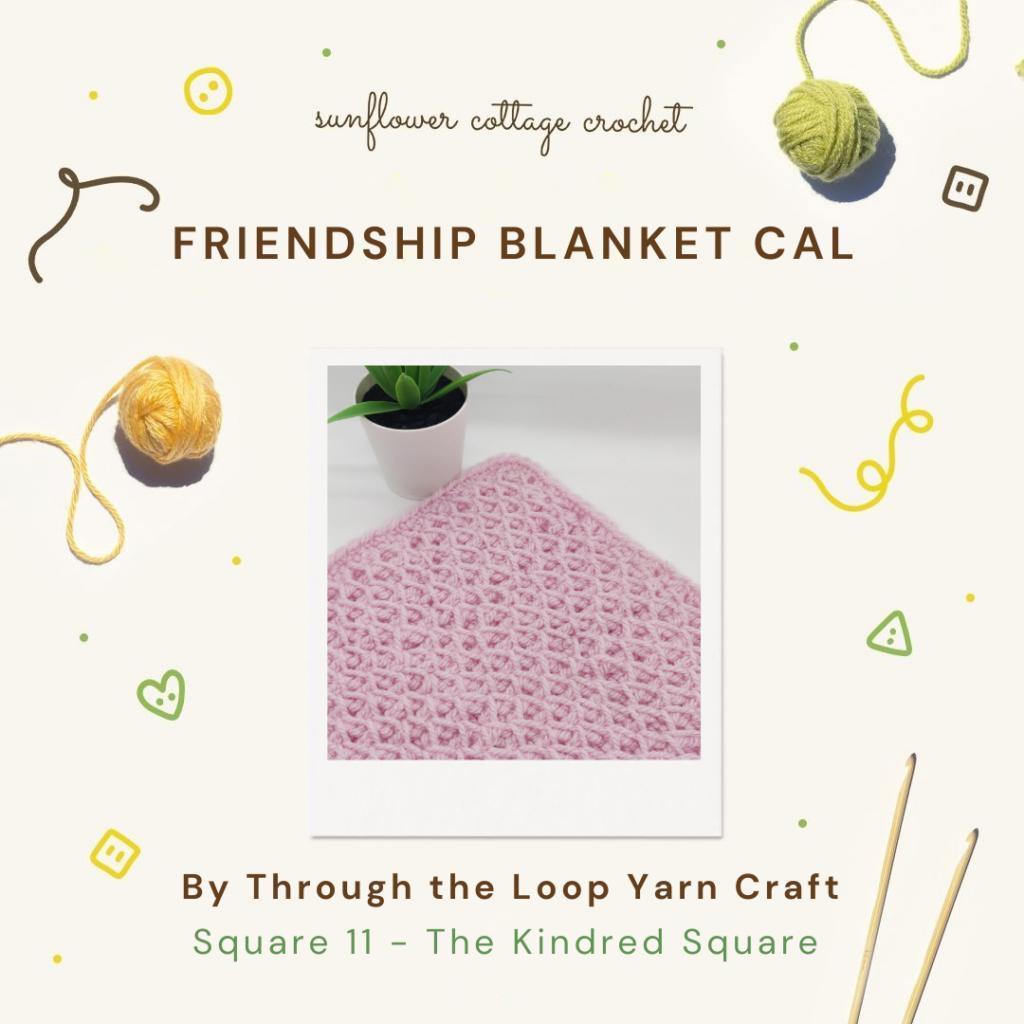 Friendship Blanket Crochet Along